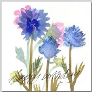 Cornflowers - Birthday