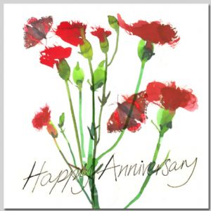 Carnations - Happy Anniversary
