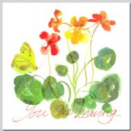Nasturtiums - You Are Leaving