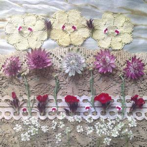 Astrantia and Sweet William
